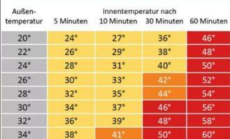 Tipps zum Umgang mit der Hitze